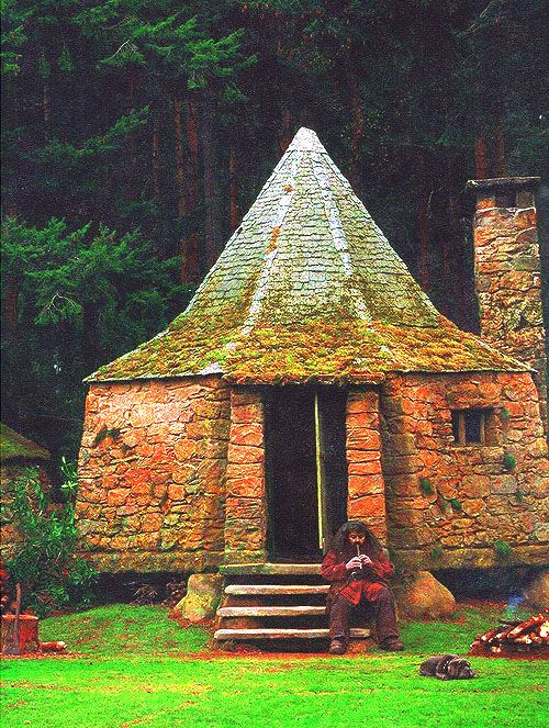 63 best images about fanfic prop 3 on pinterest What house was hagrid in