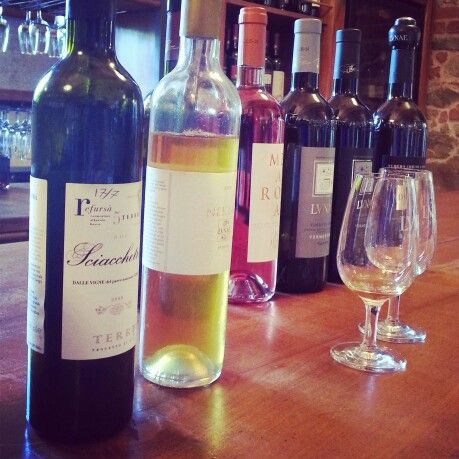 Winetasting in Liguria, cantina Lunae.  #winetasting #wine #vino