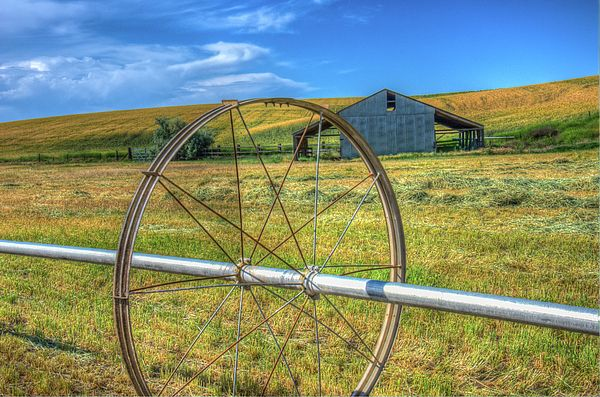 Irrigation Water Wheel and Pipe farms,green hills,lentils,rolling hills,rural,rustic,the palouse washington. pullman,washington. barns,wagon wheels,wheat,jim hammond, outdoors,james hammond,blue, yellow,sky, scenic