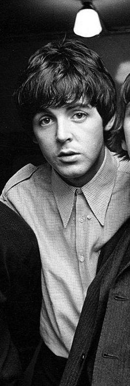 The Beatles                                                       …