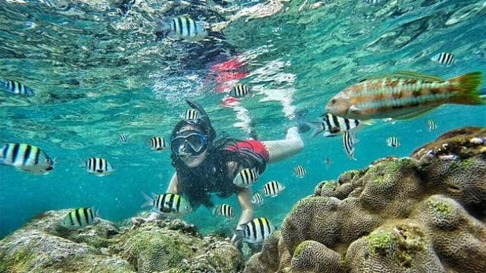 PANTAI NGLAMBOR Sebagai daerah pegunungan yang terletak di selatan pulau jawa,GUNUNG KIDULmemiliki banyak destinasi wisata yang menarik untuk dikunjungi. Karena berbatasan langsung dengan Samudra Hindia, pantai merupakan salah satu daya tarik wisataGUNUNG KIDUL…