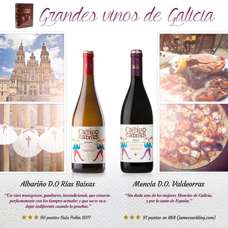 CAMINO DE CABRAS estuche regalo,colección Gourmet 2 botellas x 750 ml. Mejores vinos de Galicia. Albariño y Mencía. Descubre la excelencia de la gastronomía y cultura gallega. Pulpo a feira, marisco, Camino de Santiago.