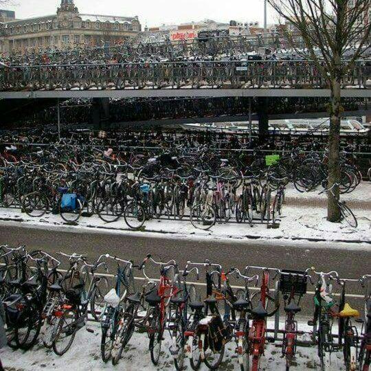 Medzitým v Holandsku...