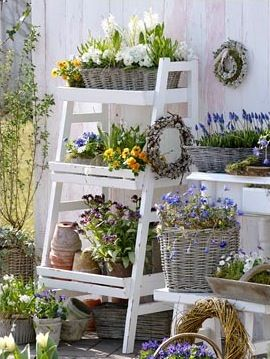 Spring potting shleves.   You can do this with an old ladder that can be rested against the house or opened and set as the picture is.: Ladder, Idea, Spring Flower, Plants Stands, Planters, Baskets, Flower Display, Plants Shelves, Gardens Pots