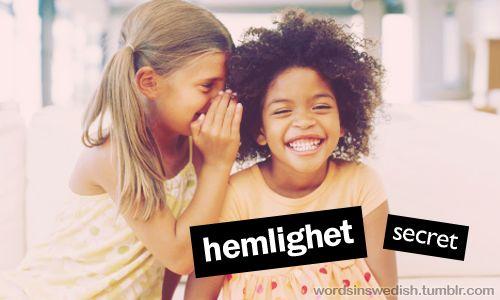 Words in Swedish : Photo