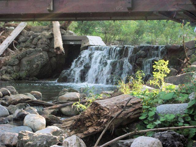 Waterfall, North York, Ontario, Canada, Edwards Gardens (100_1531)