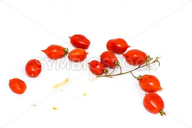 Tomatoes of Vesuvius – massimolama.com