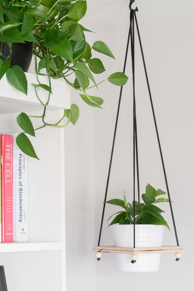 Image 0 Hanging Plant Rack Window Shelves Diy Simple Planter