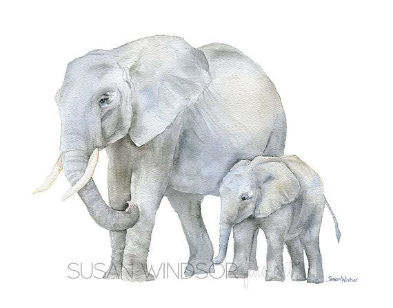Drawing Animals In The Zoo With Images Watercolor Elephant Elephant Art Watercolor Animals