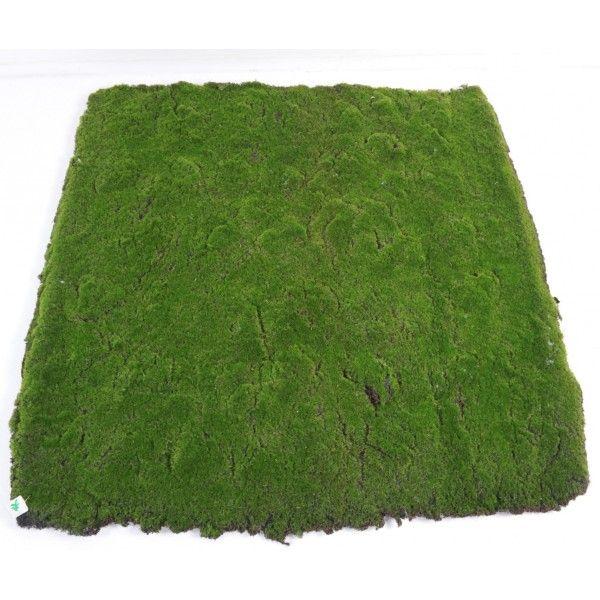 Mousse Artificielle en plaque de 100 x 100 cm