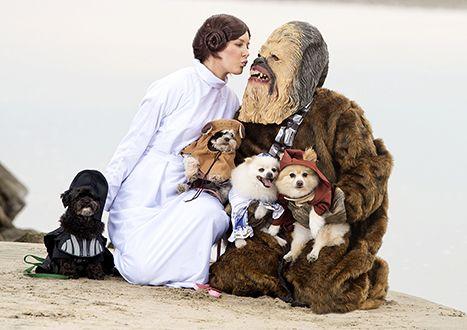 Heidi Montag, Spencer Pratt Dress as Princess Leia, Chewbacca With Their Dogs for Halloween: Pics - http://www.hollywoodfame.com/heidi-montag-spencer-pratt-dress-as-princess-leia-chewbacca-with-their-dogs-for-halloween-pics.html