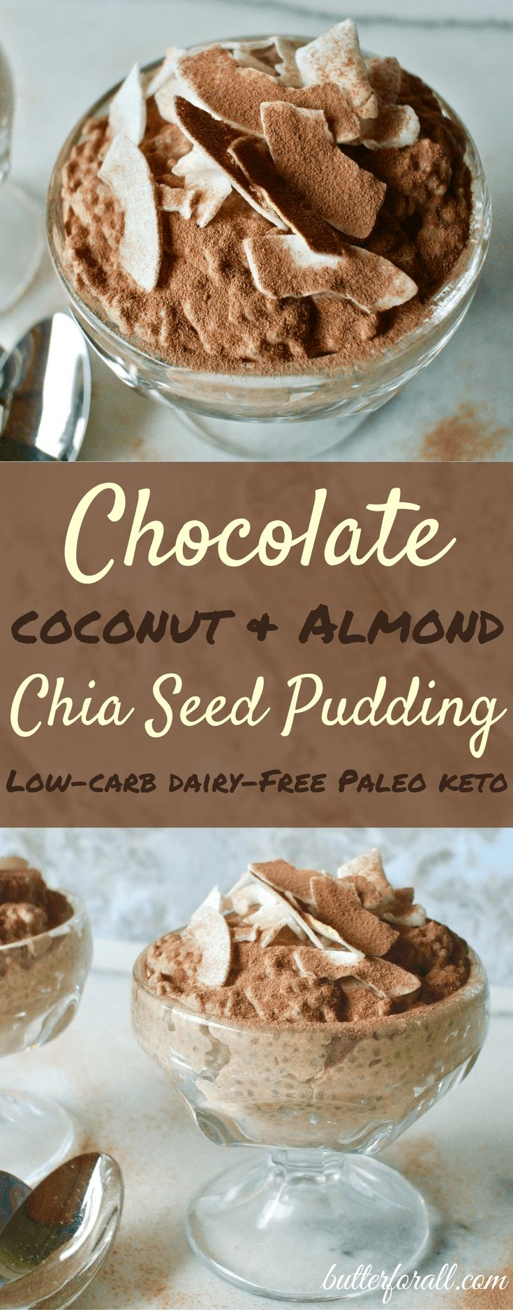 Chocolate, Coconut, and Almond Chia Seed Pudding