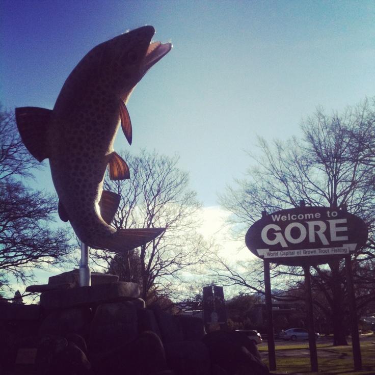 The famous Gore trout