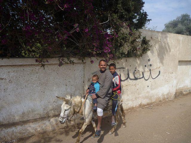 Family Transport   Flickr - Photo Sharing!