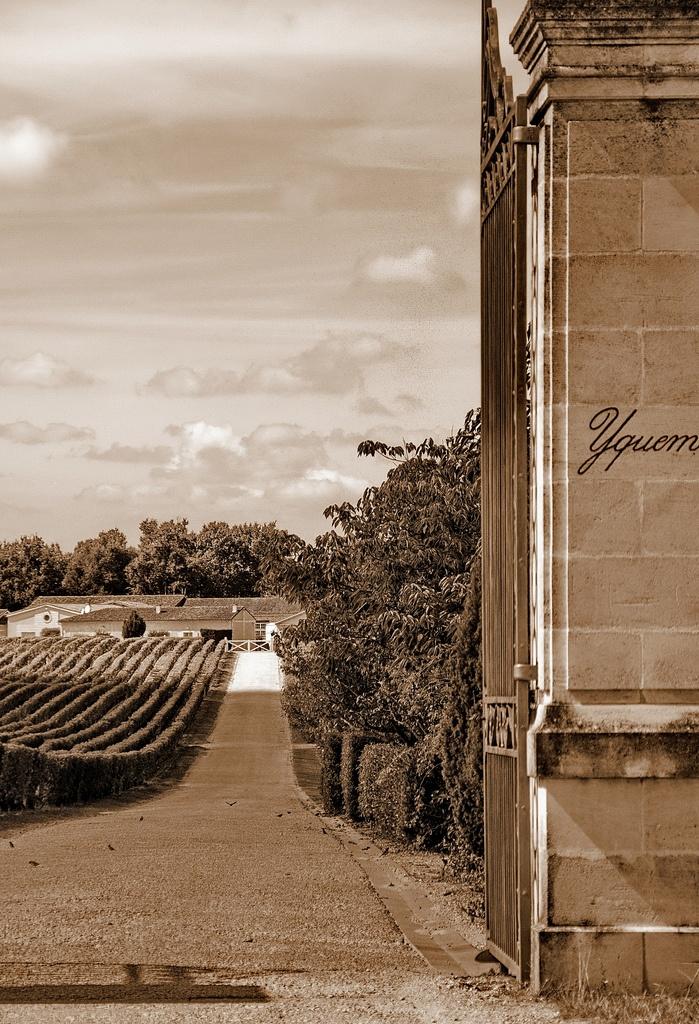 Château d'Yquem, Sauternes, Bordeaux, France