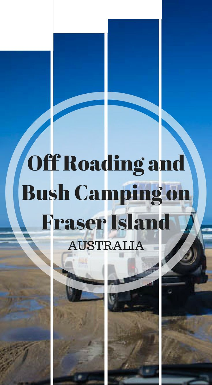 Off Roading and Bush Camping on Fraser Island Australia. From the right side to the left side; then to the back and then the front, the shocks bounce you around in the 4×4 as you head over uneven sandy ruts and large tree roots. The low hanging branches wipe across the side of the truck down a one way trail heading across the island to the beach. Click to read more at http://www.divergenttravelers.com/fraser-island-4x4-road-driving-bush-camping/