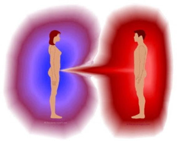 Suelen tener un sistema del aura poco desarrollado, con recursos energéticos deficientes, y con el fin de obtener la energía que necesitan tienden a invadir