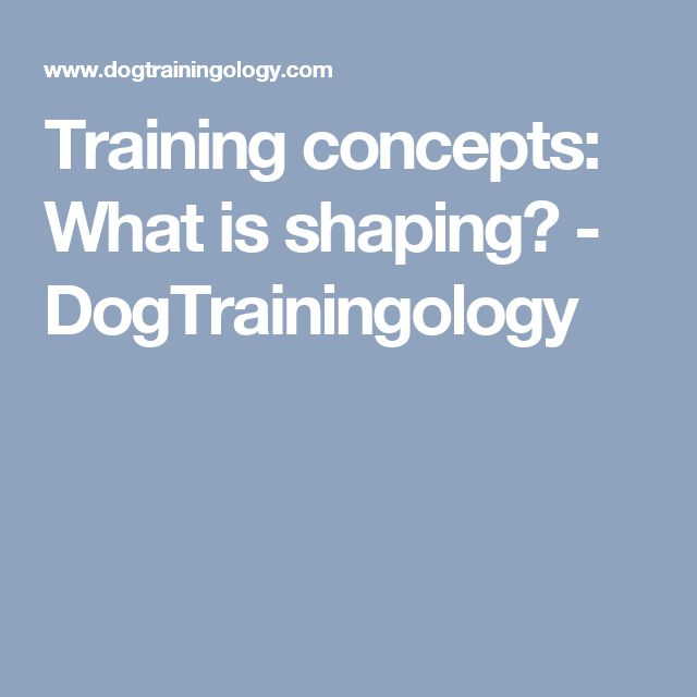 Training concepts: What is shaping? - DogTrainingology