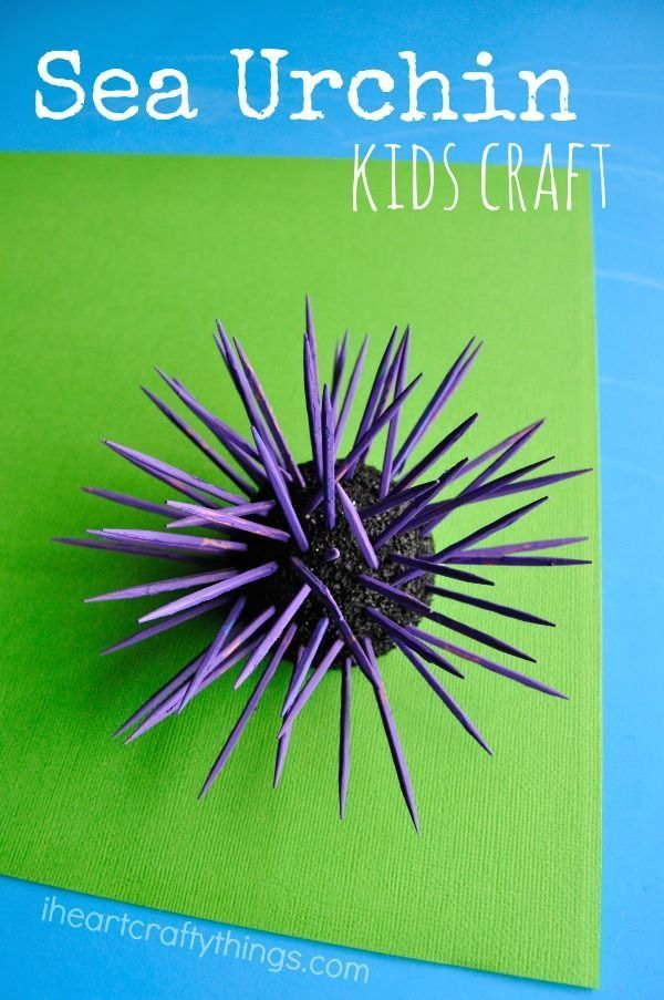 Sea Urchin Kids Craft great for learning about or exploring ocean tide pools.