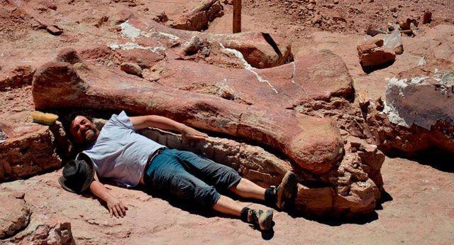 Descoberto o maior dinossauro que já habitou o planeta - Animal Planet
