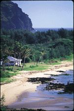I've wanted to go here since planning our honeymoon almost 10 years ago! Totally secluded house right on the beach in Kauai. One day...