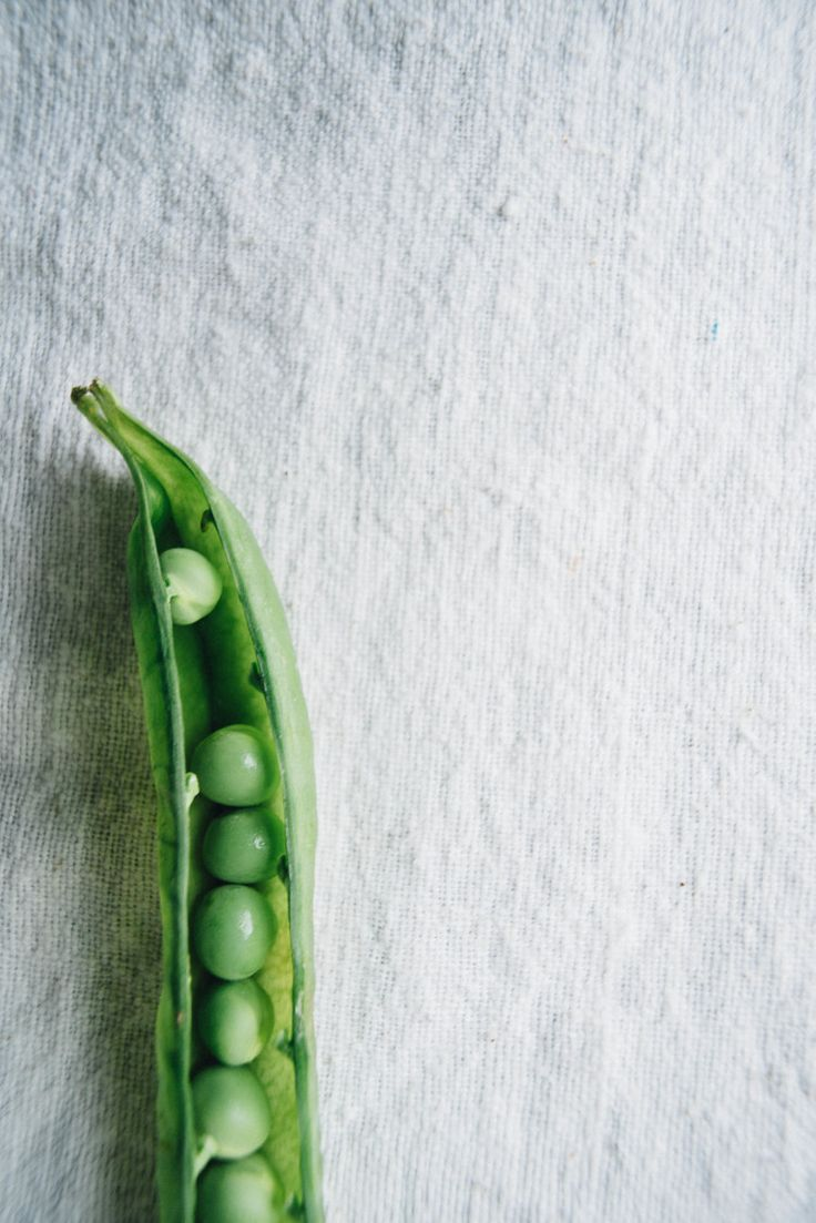 Peas in a pod | Dolly And Oatmeal