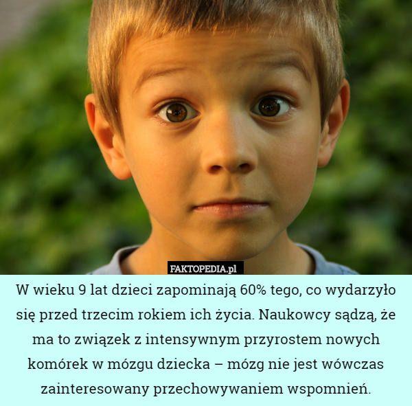 Faktopedia CCCXLII - najpiękniejsza biblioteka na świecie jest w Polsce - Joe Monster