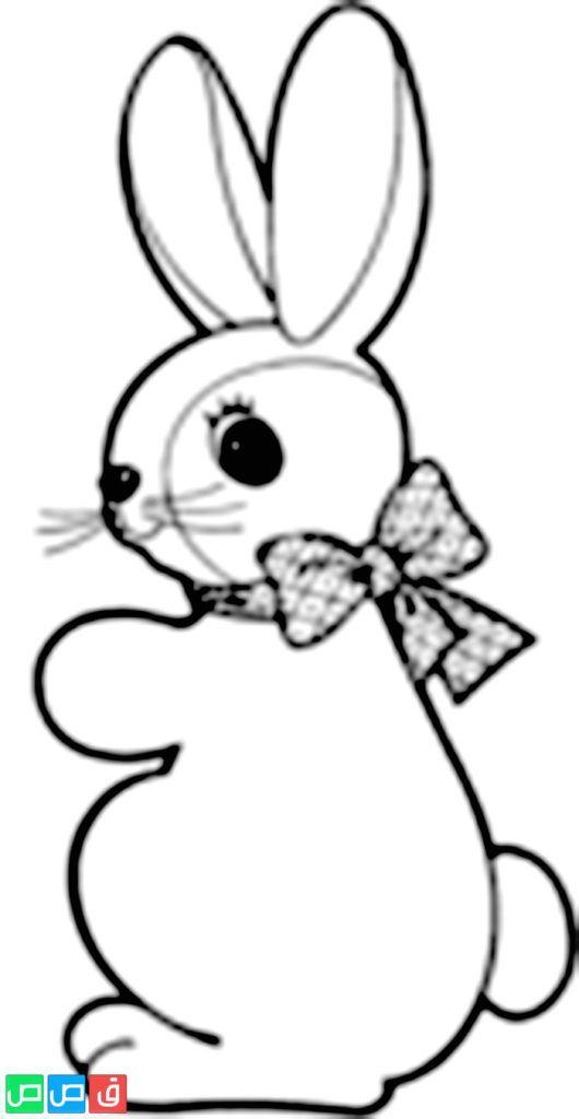 Pin On رسم ارنب للتلوين