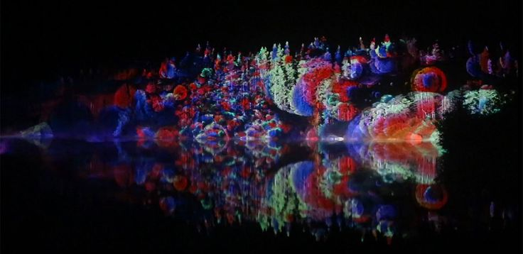 Projection Mapping On Forest