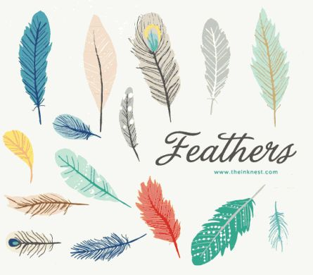 Feathers are like Snowflakes...  feather art   feather illustrations   feather tattoo   tattoo ideas   tattoo inspiration