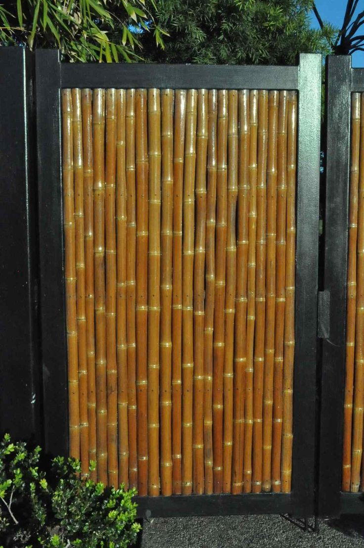 Diy Bamboo Privacy Fence Bamboozled Privacy Fence