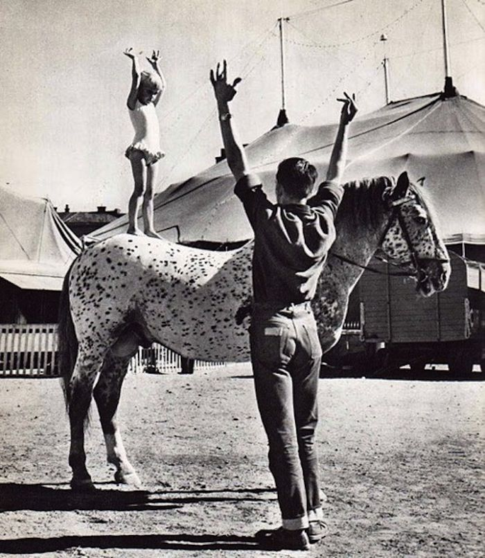 A man taught me how to do this on a Clydesdale when I was about 12.  The horse was so gentle.  It's one of my favorite memories.