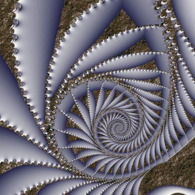 Spirals | thanks_for_spirals.jpg (large)