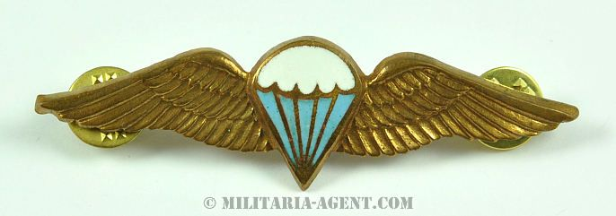 Parachute wings-South Africa(Freefall bronze)