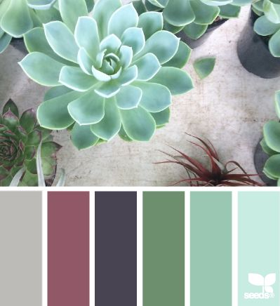 Succulent palette - beautiful bedroom colors