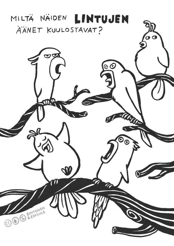 Kortti 12. Oksilla istuu viisi melko saman näköistä lintua. Jos oikein tarkkaan katsoo, voi kuulla, kuinka eri tavalla ne ääntelevät. Valitse yksi linnuista ja esitä sen ääntelyä. Arvaako kaverisi, minkä linnun valitsit? Voitte myös kokeilla...