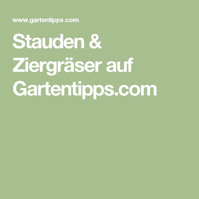 Stauden & Ziergräser auf Gartentipps.com