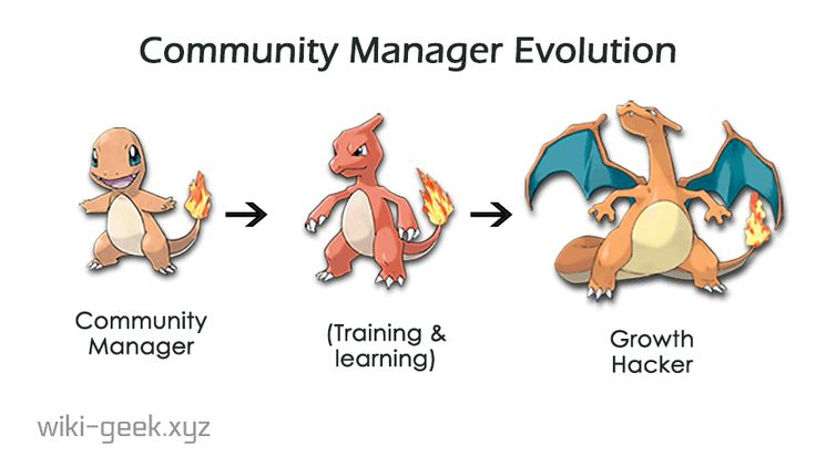 Community manager Growth hacker, pokemon evolution