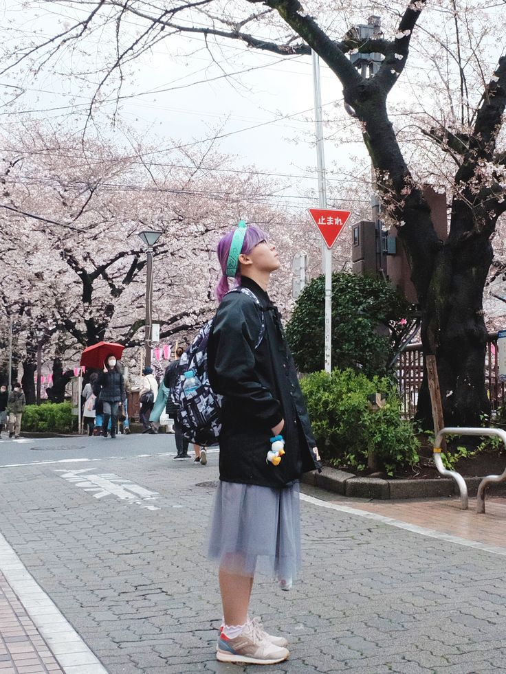 Big Dreamer: Guide to Chase Cherry Blossom in Japan + 2018 Fore...