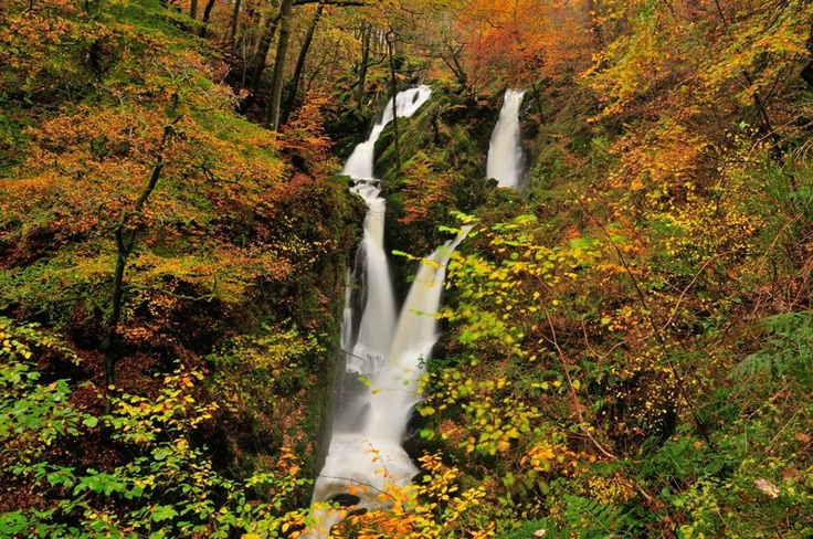 Stockghyll Force by Stewart Smith
