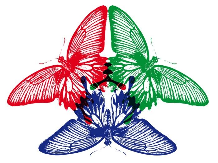 duality_ still in progress #butterflies #butterfly #project #rgb