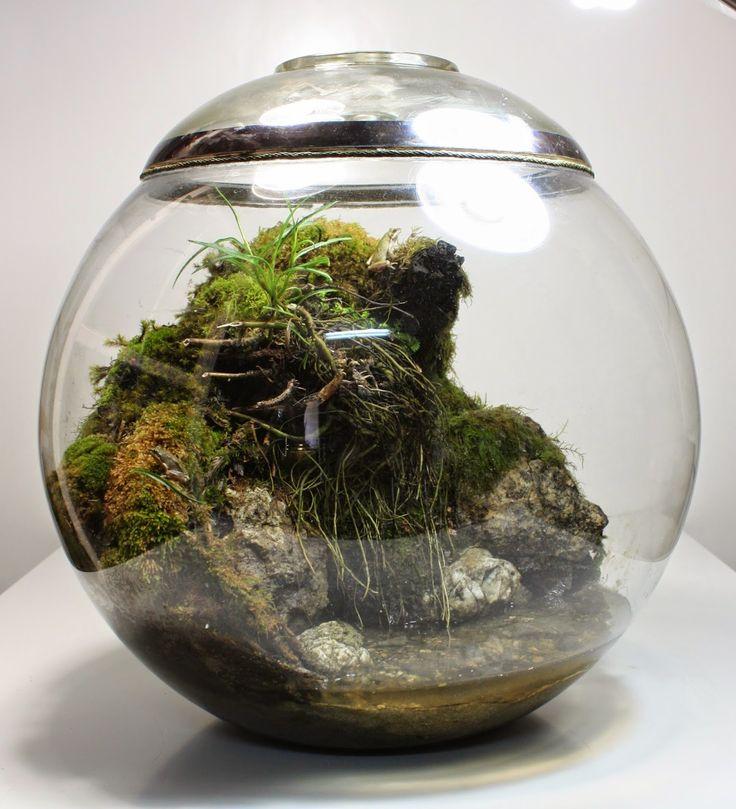 109 Best Миниатюры Images On Pinterest Moss Terrarium