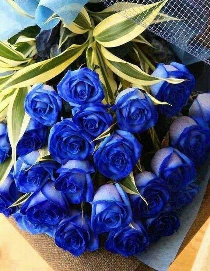 Картинки с днем рождения голубые розы