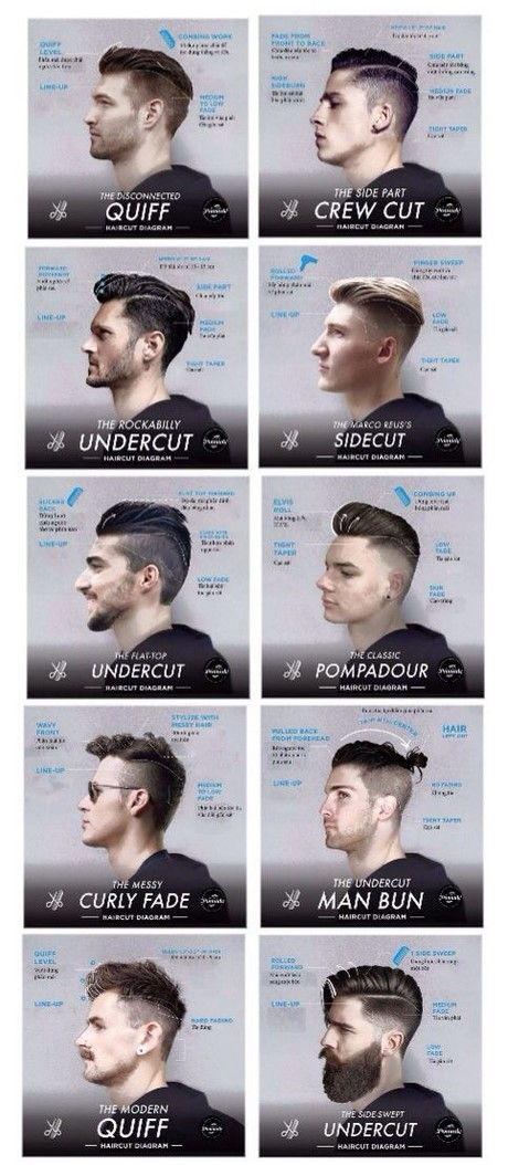 Styles of Men's Haircuts – The Best Hairstyles   – Tipps und Tricks