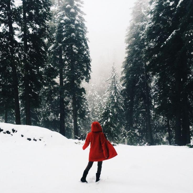 winter-inspro-december-09