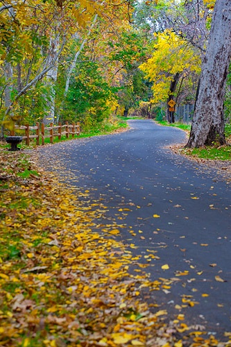 Bidwell Park in the Fall, Chico, CA by Anthony Dunn Photography, via Flickr