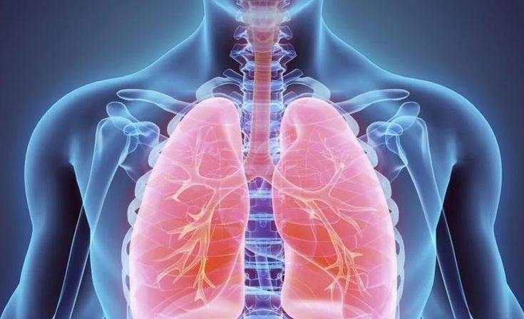 مقال علمي عن الجهاز التنفسي يتكون من مقدمه وعرض وخاتمه قصير Deep Breathing Exercises Lunges Breathing Exercises