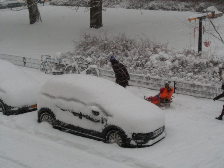 Polo onder de sneeuw