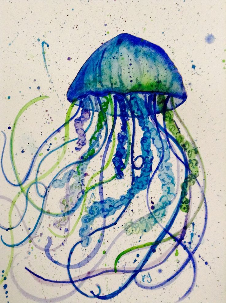 Aquarell Qualle Sea Creatures Art Jellyfish Art Sea Art