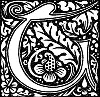 images about art nouveau lettering on pinterest   typography    william morris mastered every art and craft to which he set his hand  revelling in designs  patterns  colours and textures  and placing his stamp on
